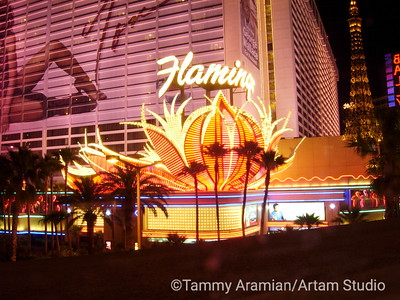 Vegas hotels and neon