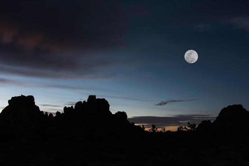 Supermoon over Joshua Tree National Park