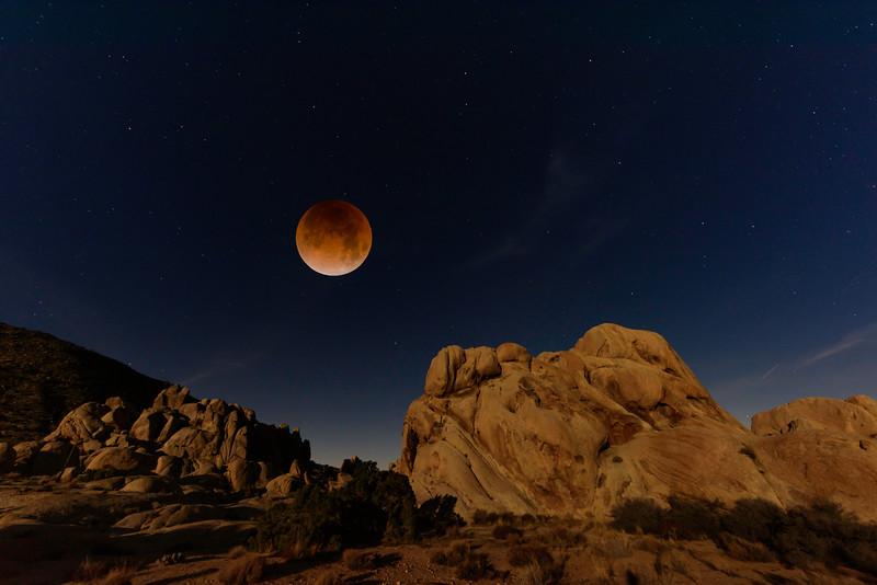 Super Blue Blood Moon Eclipse, Joshua Tree
