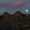 Full Supermoon Rise over Joshua Tree National Park cliffs