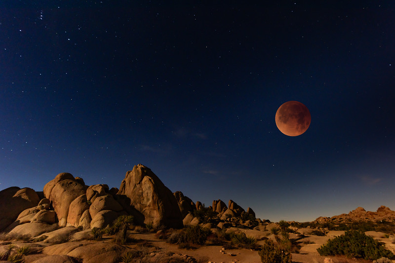 Super Blue Blood Moon Total Eclipse, Joshua Tree