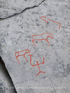 Rock carvings -  deeror elk and a hunter or shaman - female?:: painted over for easier observation