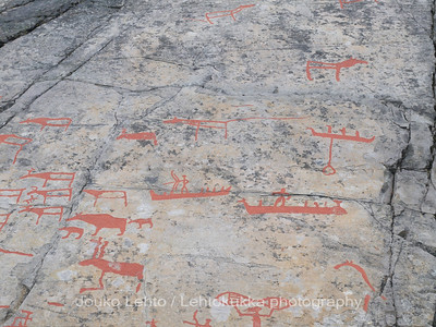 Rock carvings -  deers, boats, bears(?), aboat with a lasso or some kind of fishing equipment,  a hunterman, warship etc, : painted over for easier observation