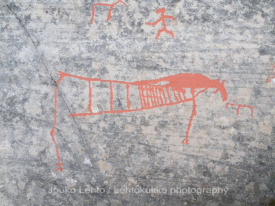 Rock carvings -  deers, man  etc, : painted over for easier observation