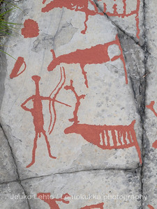 Rock carvings -  deers, a hunterman etc, : painted over for easier observation