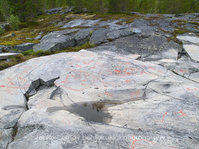 Rock carvings -  elks, deers, reindeer fence etc, : painted over for easier observation