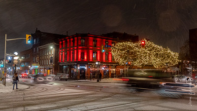 Byward Market in a February Storm