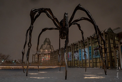Maman at the National Art Gallery in Ottawa