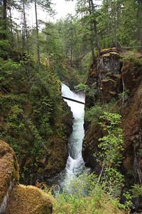 Qualicum Falls provincial park, Vancouver Island.
