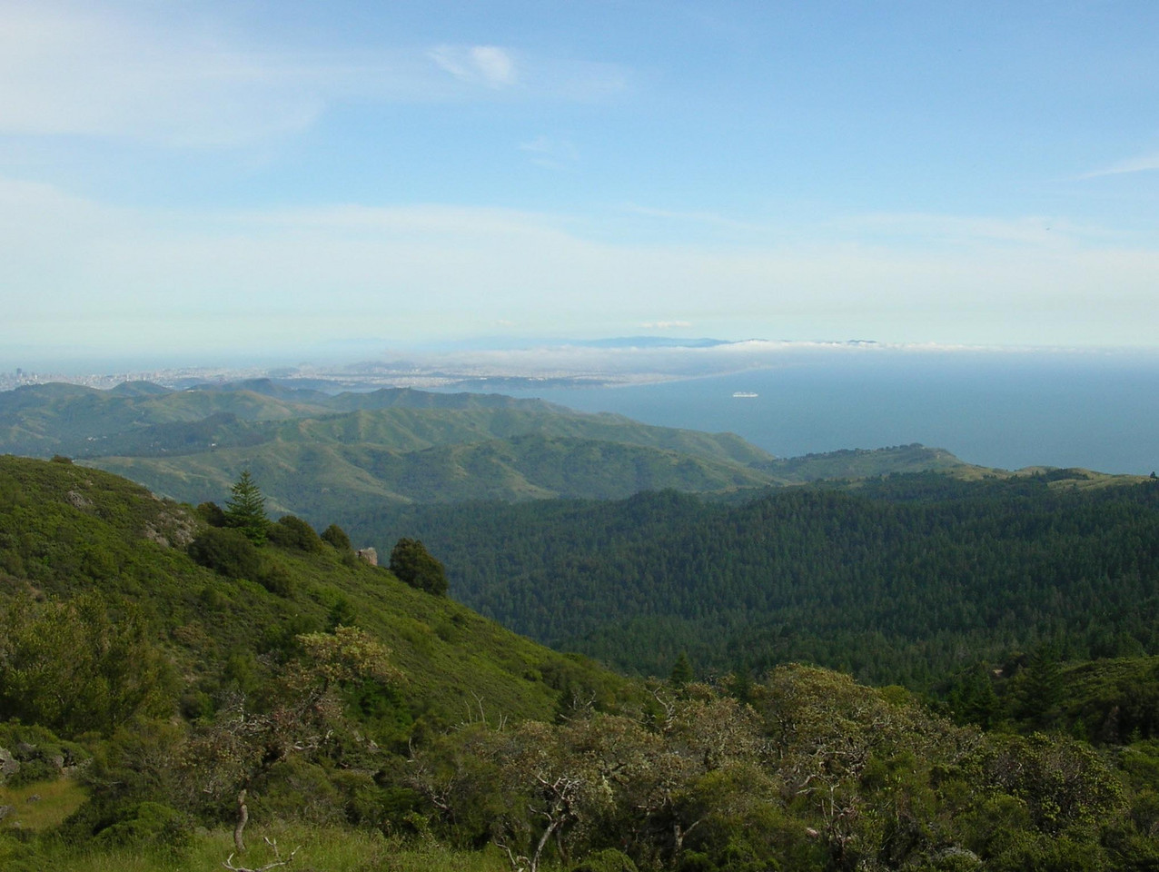 Mt. Tam (with San Francisco in the distance) - 2005