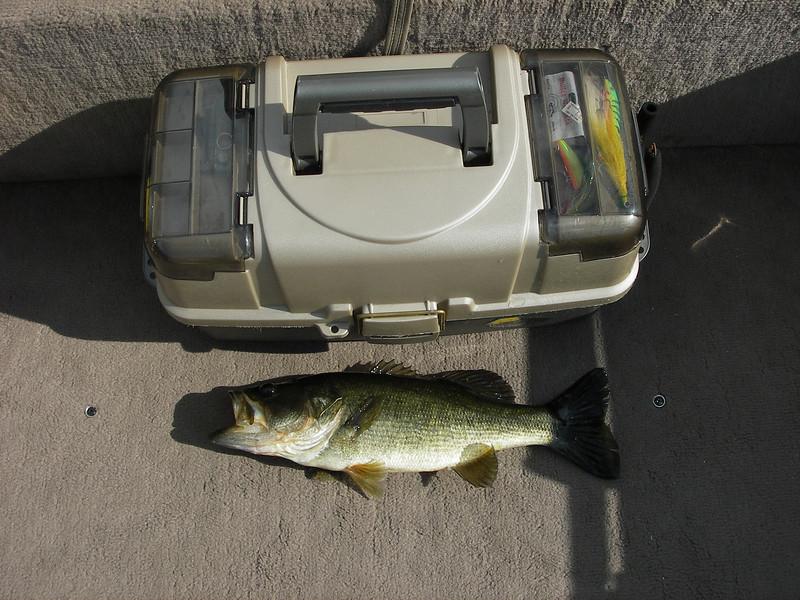 Caught on Lake Okahumpka