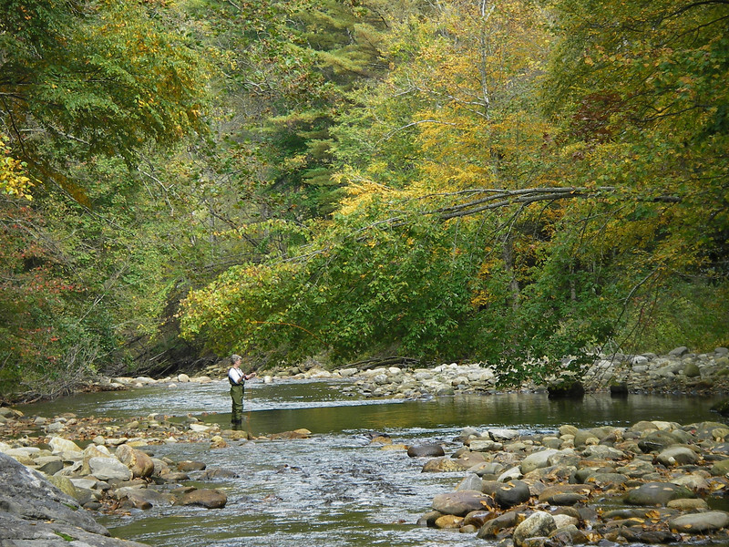 Lynda fly fishing the Pigeon River, ouside of Waynesville, in western North Carolina