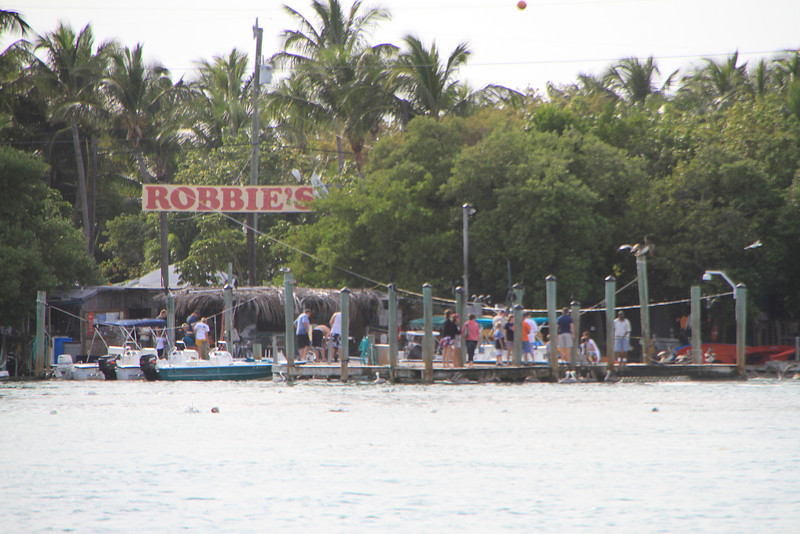 A long established marina in the Florida Keys, where you can hand feed the tarpon.