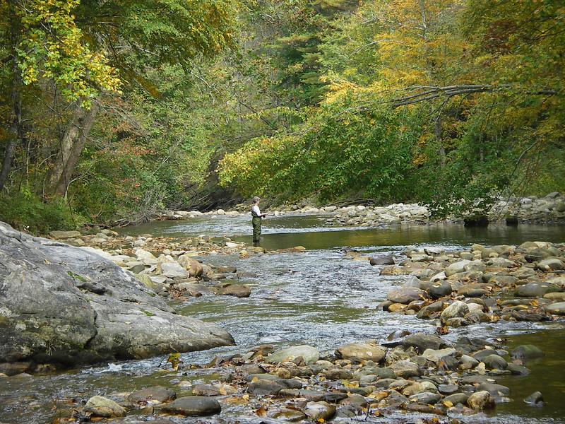 Lynda fly fishing the Pigeon River, outside Waynesville, in western North Carolina.