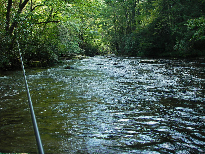 Big Creek, outside the Cataloochee Preserve, in Western North Carolina