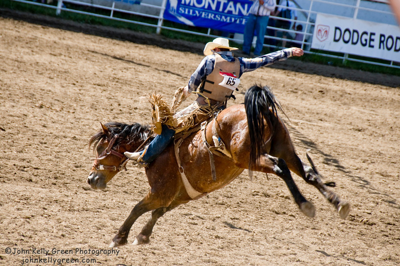 Bareback Rider - Home of Champions Rodeo, Red Lodge, Montana - 2010