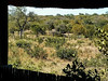 To one side the hide overlooks a small dam,
