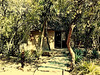 The neighboring chalet is also prettily tucked away among some greenery,