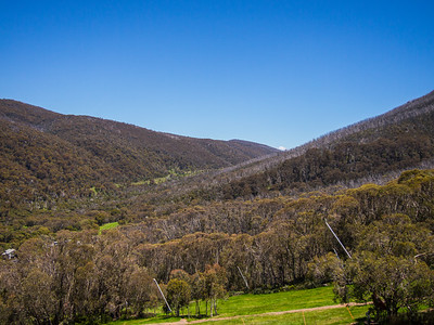 Lower half of Thredbo's runs, looking up the valley to the Cascades and Dead Horse Gap