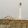 Point Arena Lighthouse...