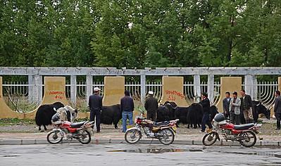 Day 10 - Shigatse to Lhasa