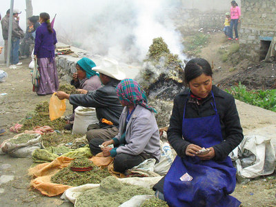 Selling incense for offerings on the road up to Drepung Monastery.