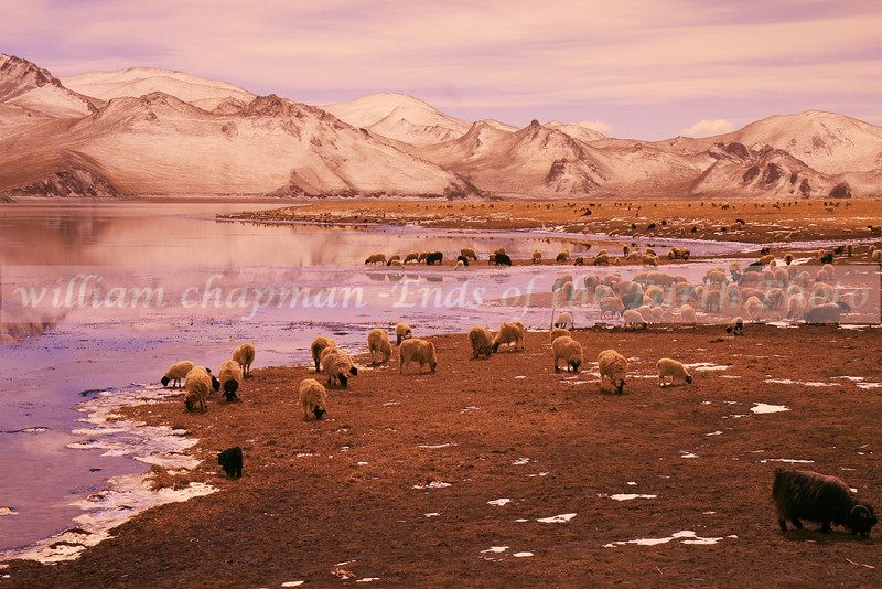 Yamdrok Lake- Central Tibet