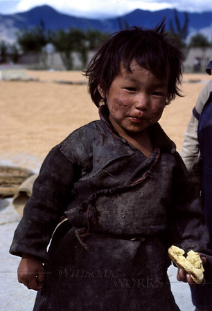 Young Tibetan boy at the barley harvest (the Tibetans' faces often show wind-burn)