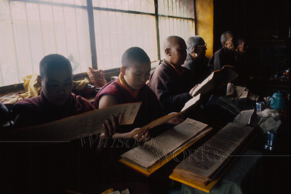 Monks studying tablets in a monastery (Tasilhunpo?)