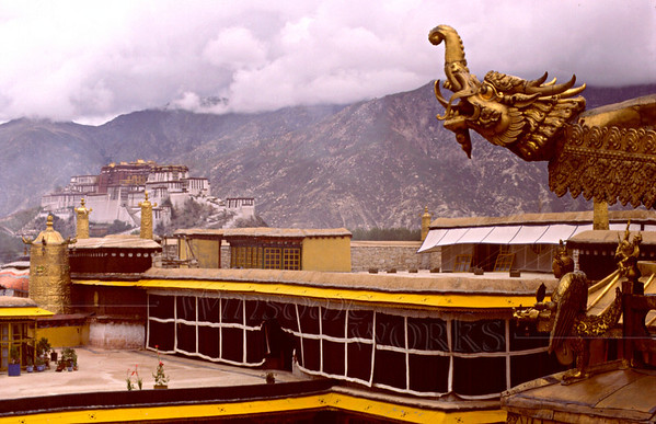 On the roof of the Jokhang Monastery, with the Potala hovering in the background  [FX]