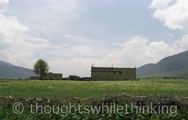 Tibet 2006 Shating to Litang July 31