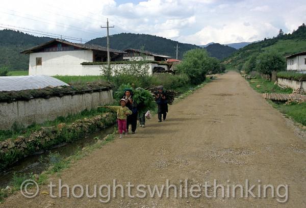 Tibet 2006 Ringha near Zhongdian July 29
