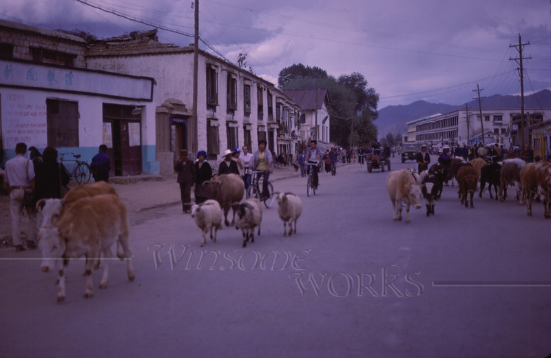 The main street through Lhasa, with its usual motley crew... and this was at 10 PM, which was when sundown was in those days!  (the entire countries of China and Tibet were all on Beijing time!)