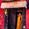 Monks at Ngor Monastery