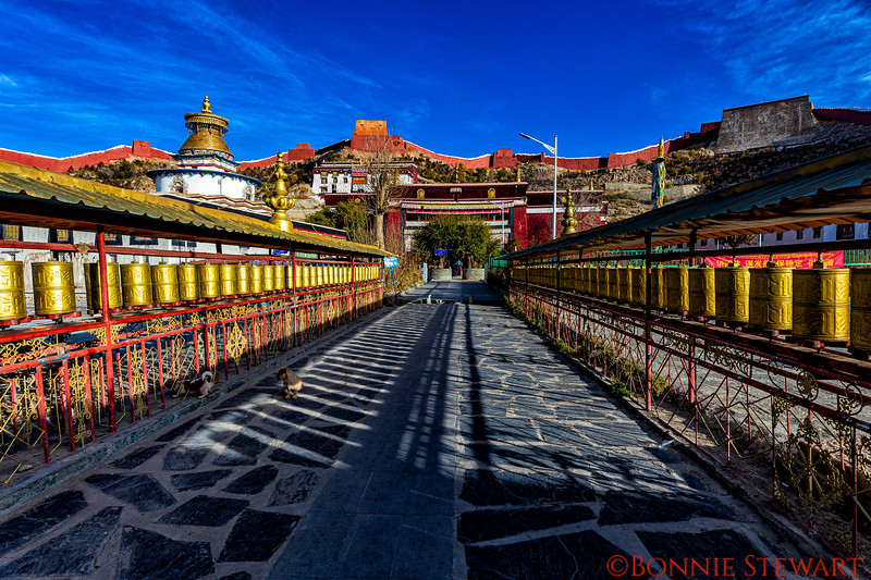 Palcho Monastery or Pelkor  Chode Monastery and Temple complex