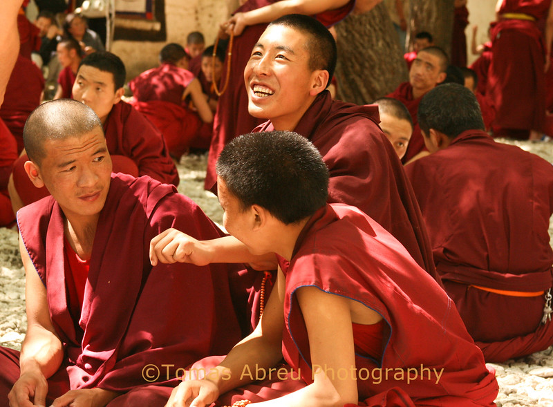 Sharing a laugh while debating the Scriptures, Sera Monastery