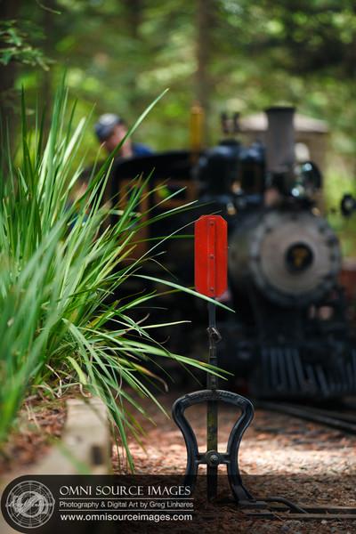 Tilden Park Steam Train - Berkeley, CA