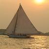 """Skipjack, """"Rebecca T. Ruark"""" sails near Tilghman Island"""