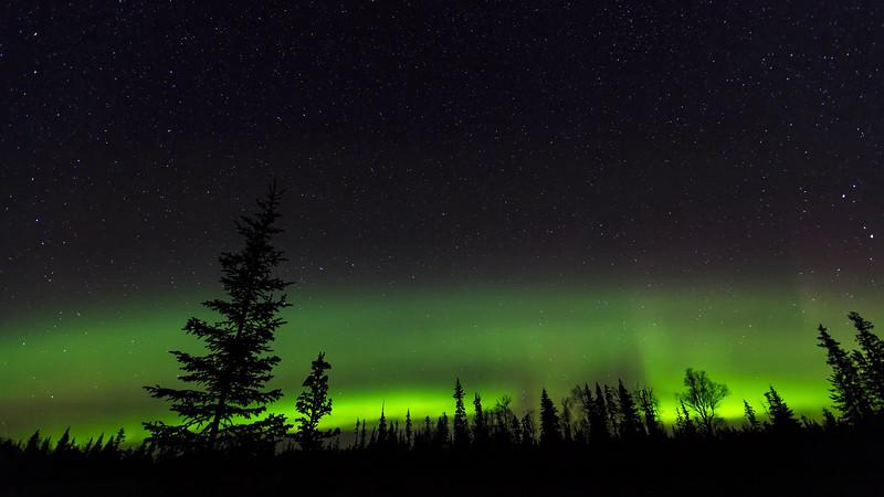 Aurora Borealis  ©2017  Janelle Orth