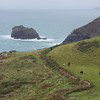 Pastoral scene at Tintagel