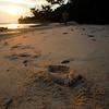 The Footprint