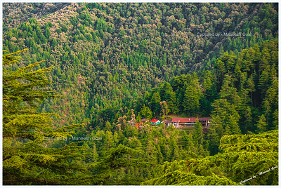 View From Chail Palace