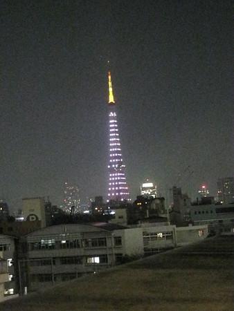 Tokyo Feb 2010