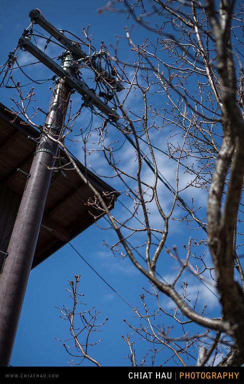 Travel Photography by Chiat Hau Photography(Shirakawa Heritage Village)