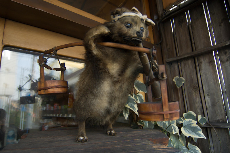 Anthropomorphic taxidermy is never as good as it sounds