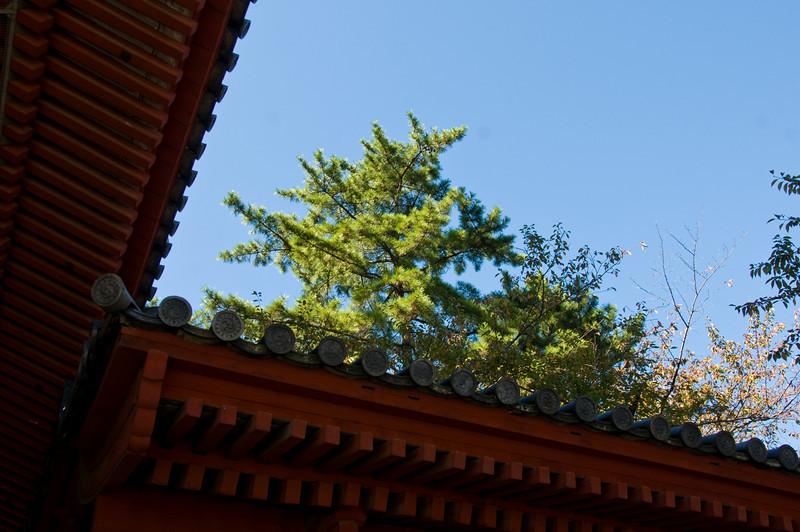 "Zojiji Temple - built in 1393 - <a href=""http://www.japan-guide.com/e/e3010.html"">http://www.japan-guide.com/e/e3010.html</a>"