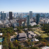 View from the Tokyo Tower