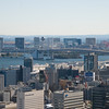View from the Tokyo Tower of Odaiba