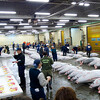 """Sellers and bidders getting ready for the 5:30am tuna auction Tsukiji Fish Market - <a href=""""http://en.wikipedia.org/wiki/Tsukiji_fish_market"""">http://en.wikipedia.org/wiki/Tsukiji_fish_market</a>"""