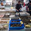 "Tsukiji Fish Market morning madness - Oysters - <a href=""http://en.wikipedia.org/wiki/Tsukiji_fish_market"">http://en.wikipedia.org/wiki/Tsukiji_fish_market</a>"